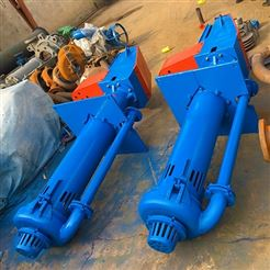 100RVSP(R)液下渣浆泵