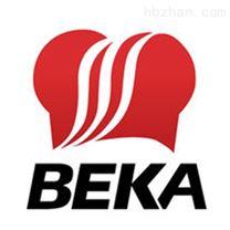 BEKABA327E-SS 压力显示器