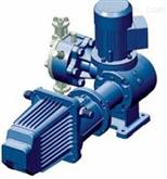 Nyva系列seko隔膜計量泵