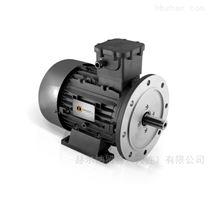 欧洲原装进口意大利orange1三相电机