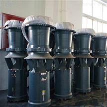 铸铁中吸式潜水轴流泵简易型潜水电泵