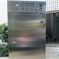 CX-TW3果蔬臭氧消毒機、食品廠臭氧消毒機