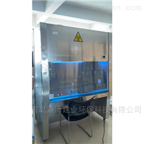 LB-1000IIB2生物洁净安全柜