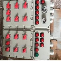 BXMD-发电厂bxmd防爆配电箱 防爆应急照明箱