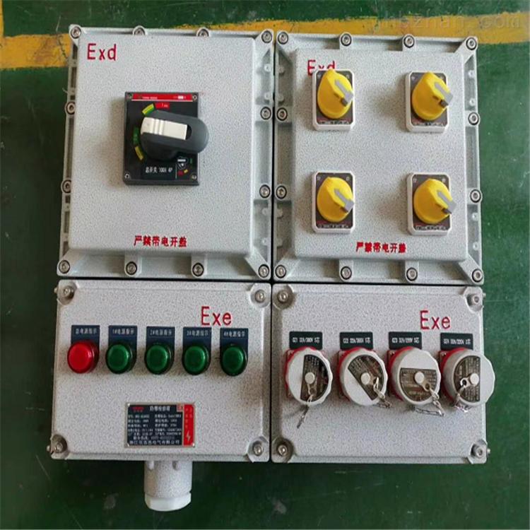 BXX52-4XX防爆检修电源箱IICT4带防雨罩