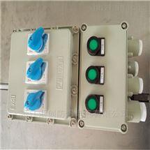 带漏电防爆断路器电源开关箱用BLK52-63/4L