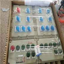 立式安装防爆配电箱带防雨罩