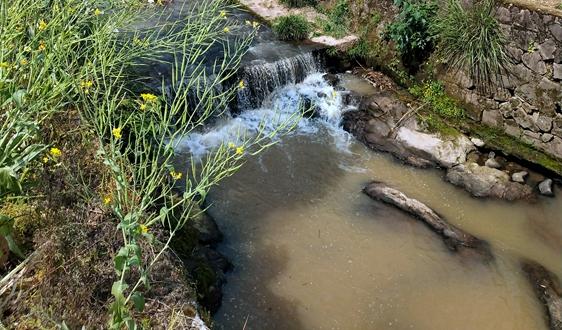 国家发展改革委 住房城乡建设部关于印发《城镇生活污水处理设施补短板强弱项实施方案》的通知