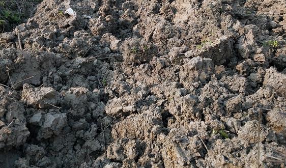 福建省持续发力推进土壤环境风险防控试点工作