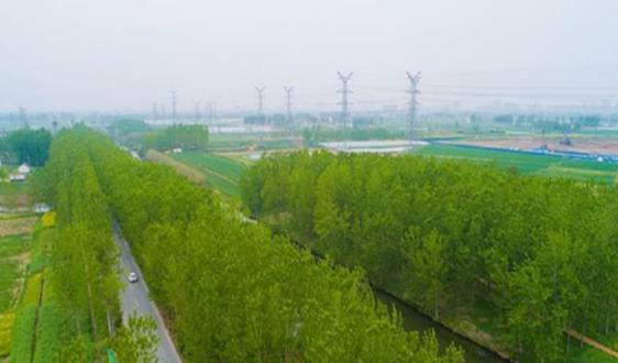 江苏省盐城滨海港经济区多点发力改善人居环境