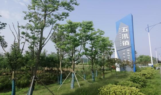 江苏省滨海县五汛镇厚植乡村环境添颜值增气质