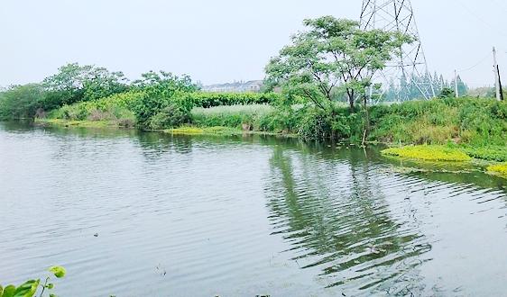 南京创新联合河湖长制 数据共享,责任共担,联合执法