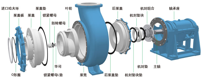 UHB-Z系列脫硫循環泵立體結構示意圖